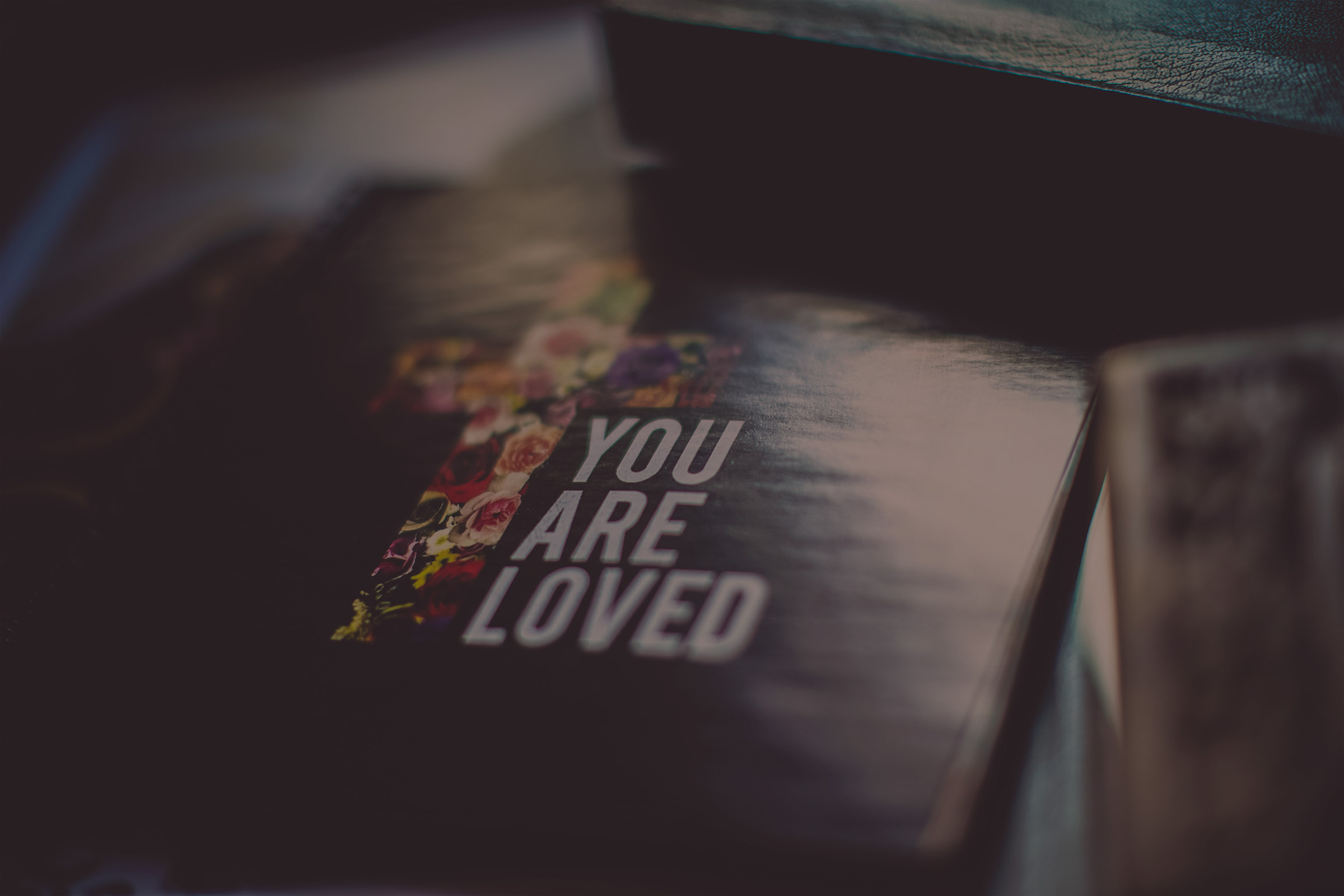 You are loved bible cover